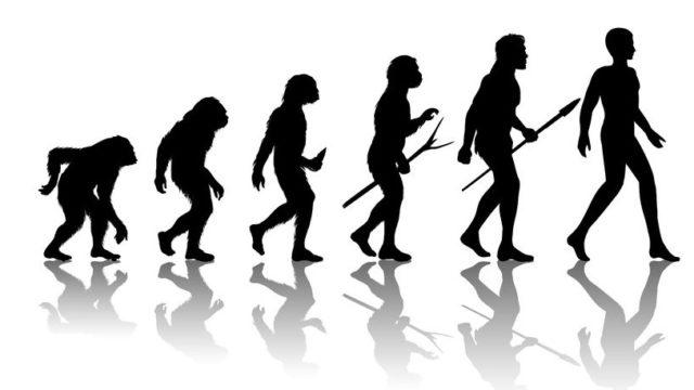 """Afbeelding behorende bij """"Geen revolutie, maar evolutie in mobiliteitsproducten"""""""